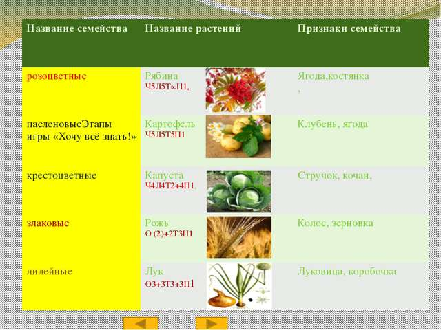 Литература и источники https://ru.wikipedia.org/wiki CD - диск «Мультимедийно...