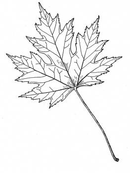 maple-leave-coloring-page