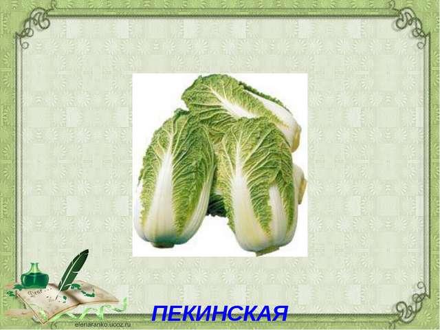 ПЕКИНСКАЯ