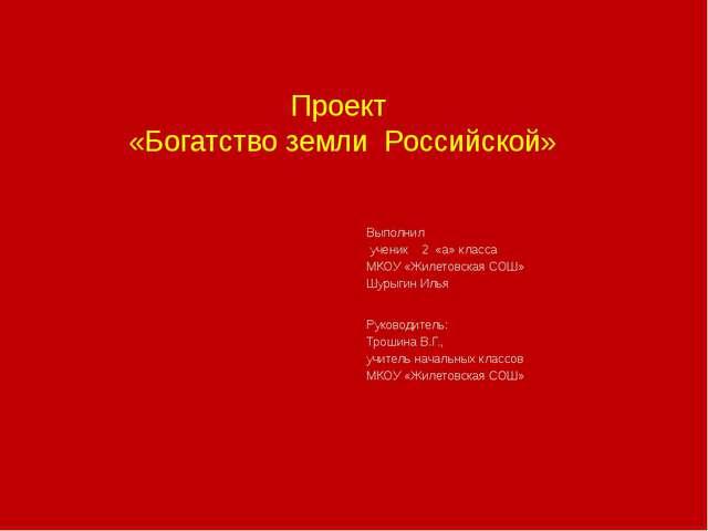 Проект «Богатство земли Российской» Выполнил ученик 2 «а» класса МКОУ «Жилето...