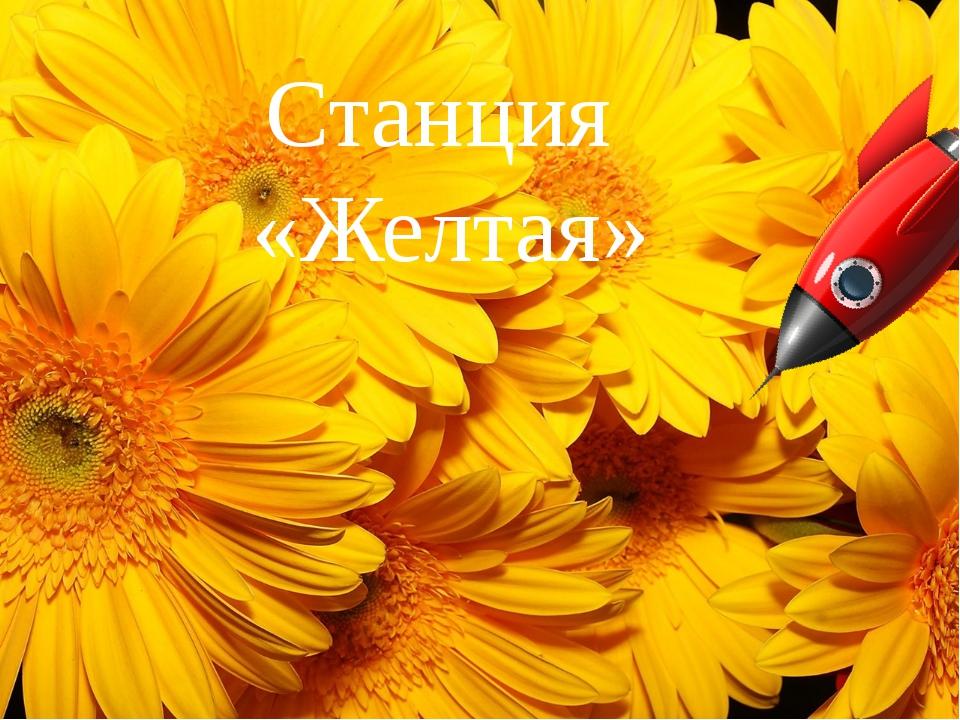 Станция «Желтая»