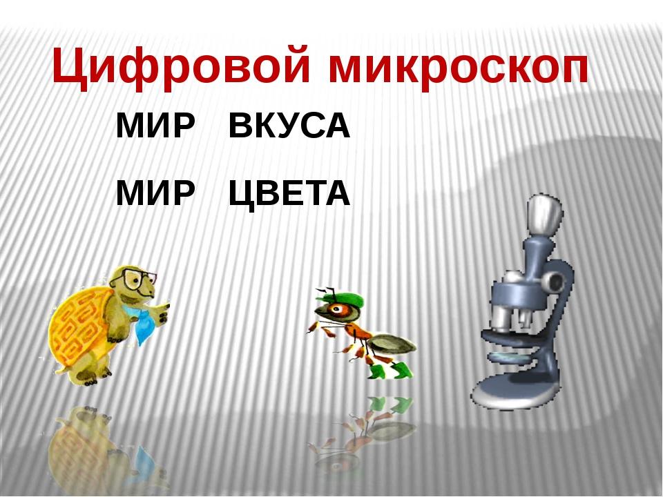 Цифровой микроскоп МИР ВКУСА МИР ЦВЕТА