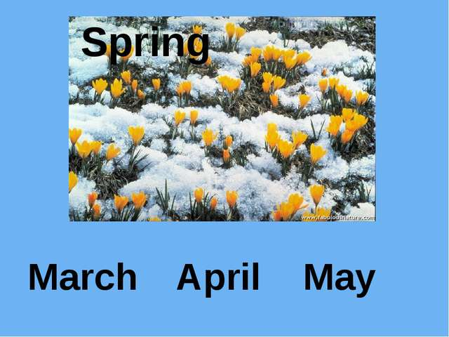 March April May Spring