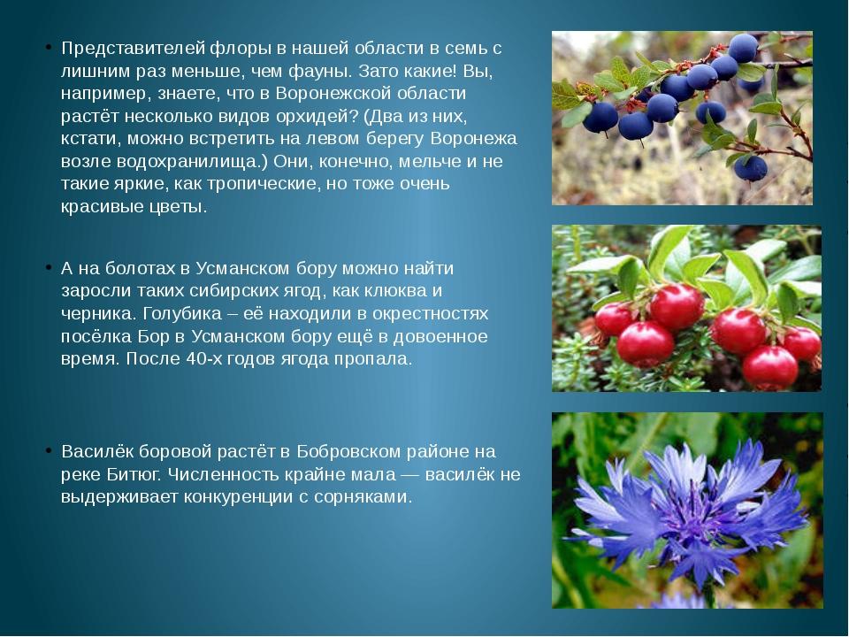 Представителей флоры в нашей области в семь с лишним раз меньше, чем фауны....