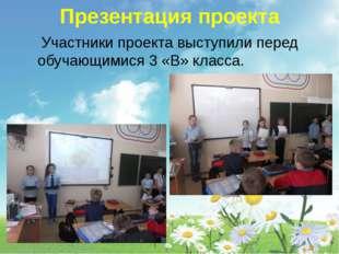Презентация проекта Участники проекта выступили перед обучающимися 3 «В» кла