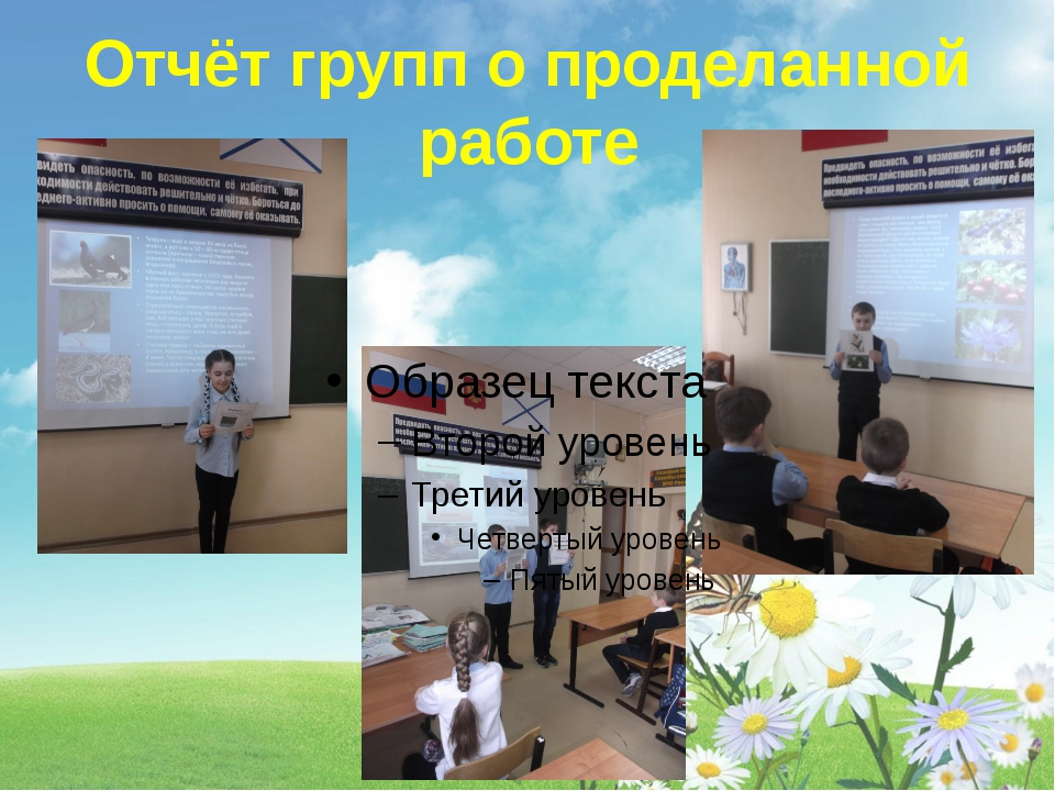 Отчёт групп о проделанной работе