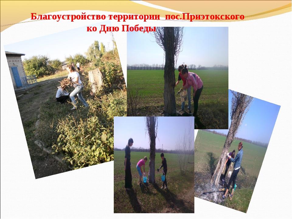 Благоустройство территории пос.Приэтокского ко Дню Победы
