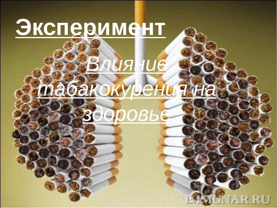 Эксперимент Влияние табакокурения на здоровье