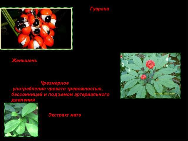Гуарана - тропическое растение, распространенное в Бразилии, используется как...