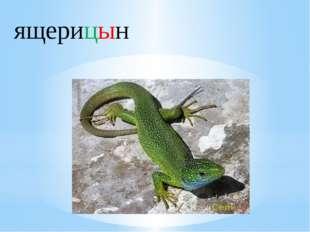 ящерицын