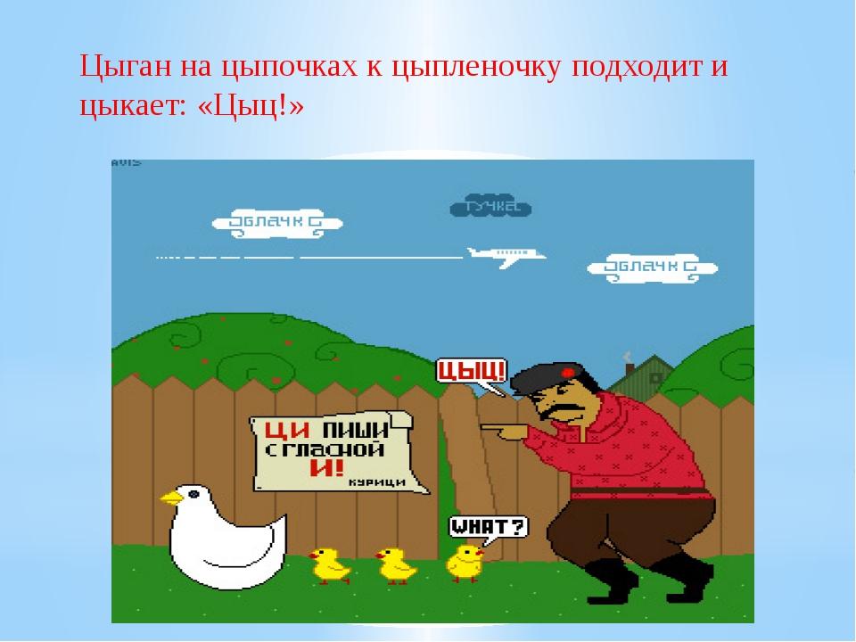 Цыган на цыпочках к цыпленочку подходит и цыкает: «Цыц!»