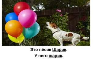 Это пёсик Шарик. У него шарик.