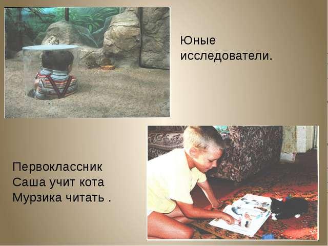 Юные исследователи. Первоклассник Саша учит кота Мурзика читать .