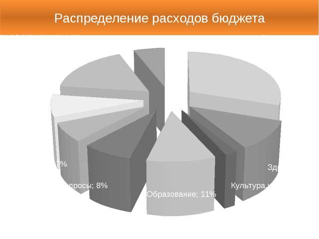 Распределение расходов бюджета