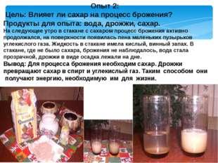 Опыт 2: Цель: Влияет ли сахар на процесс брожения? Продукты для опыта: вода,
