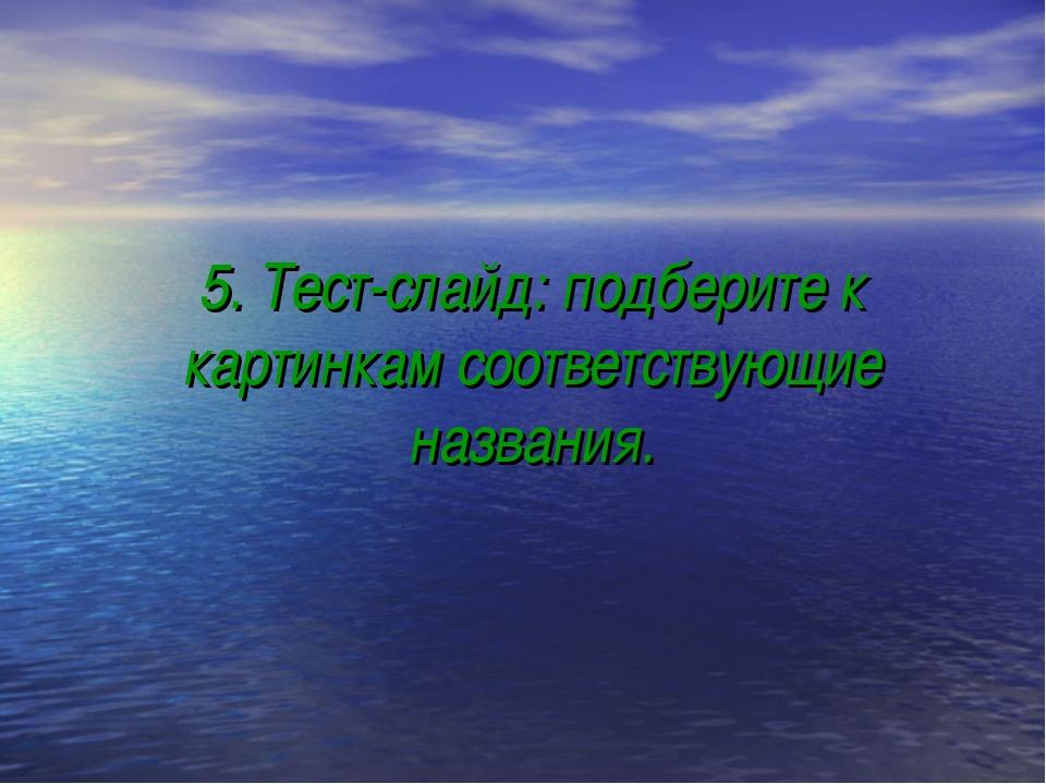 5. Тест-слайд: подберите к картинкам соответствующие названия.