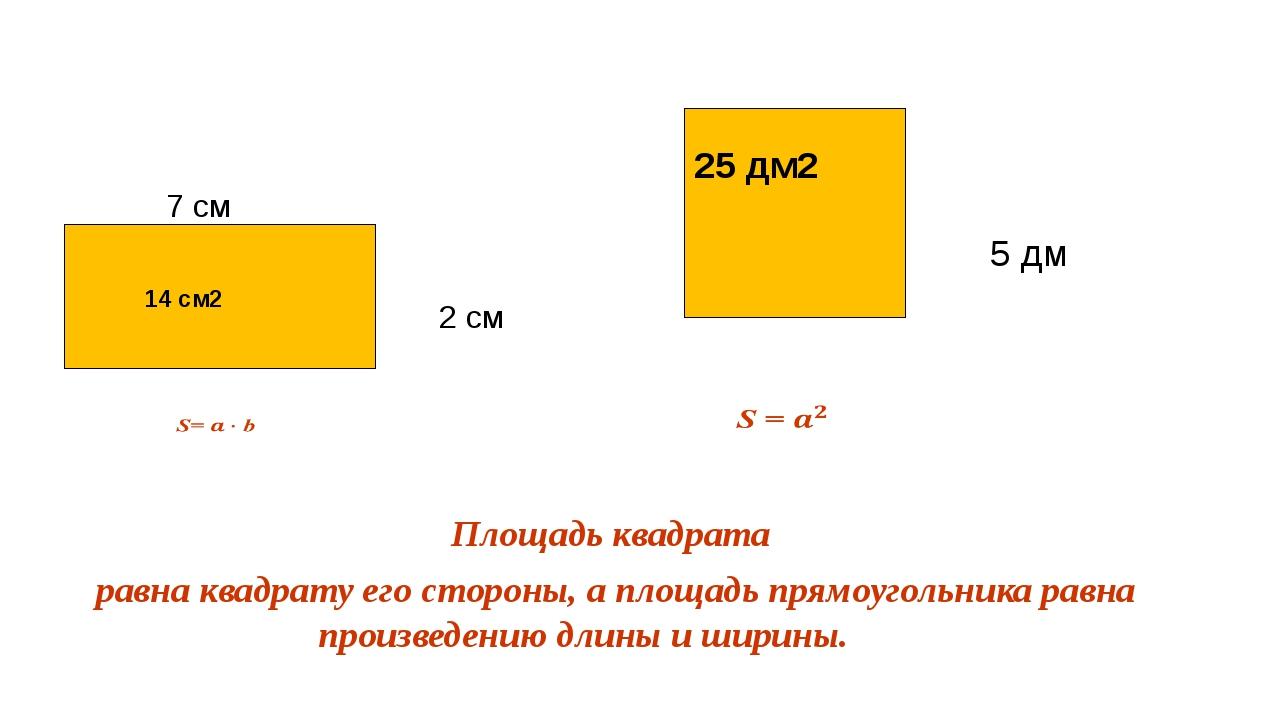 7 см 2 см 5 дм Площадь квадрата равна квадрату его стороны, а площадь прямоу...