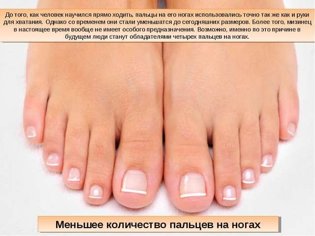 До того, как человек научился прямо ходить, пальцы на его ногах использовалис...