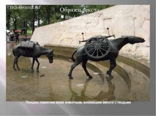 Лондон, памятник всем животным, воевавшим вместе с людьми