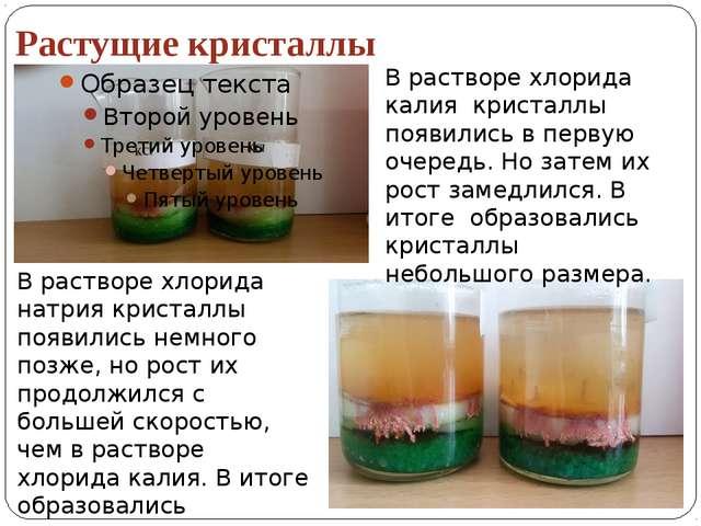 Растущие кристаллы В растворе хлорида калия кристаллы появились в первую очер...