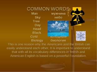 COMMON WORDS Man мужчина Sky небо Tree дерево Day день Head голова Black