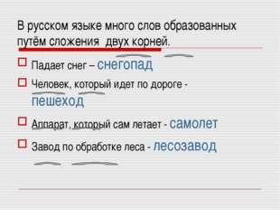В русском языке много слов образованных путём сложения двух корней. Падает сн