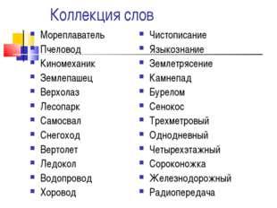 Коллекция слов Мореплаватель Пчеловод Киномеханик Землепашец Верхолаз Лесопа