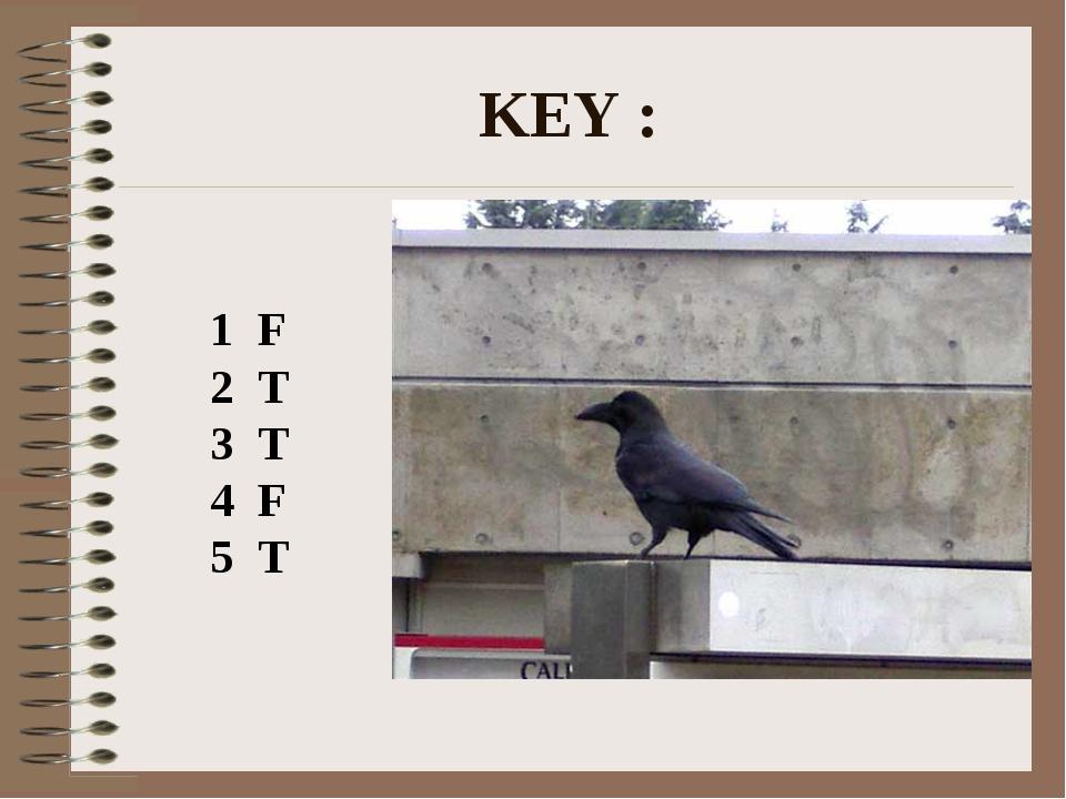 KEY : 1 F 2 T 3 T 4 F 5 T