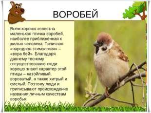 ВОРОБЕЙ Всем хорошо известна маленькая птичка воробей, наиболее приближённая
