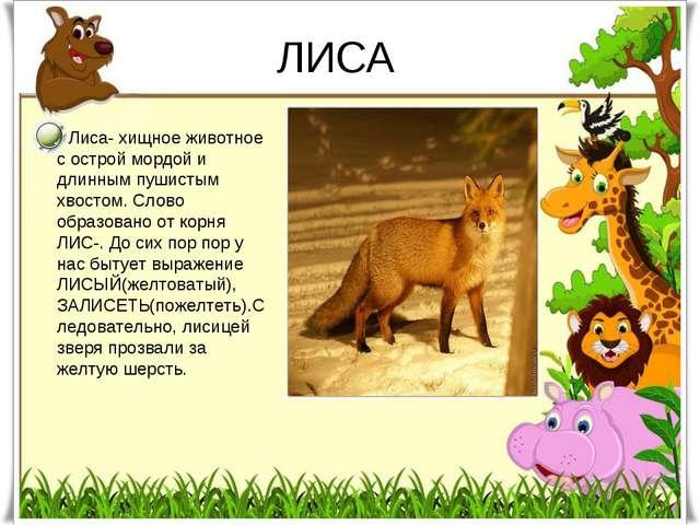 ЛИСА Лиса- хищное животное с острой мордой и длинным пушистым хвостом. Слово...