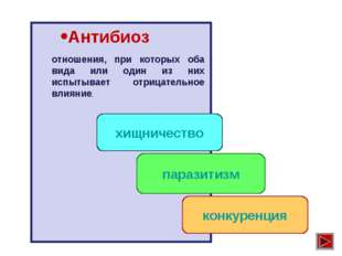 Антибиоз хищничество паразитизм конкуренция отношения, при которых оба вида и