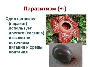 Паразитизм (+-) Один организм (паразит) использует другого (хозяина) в качест