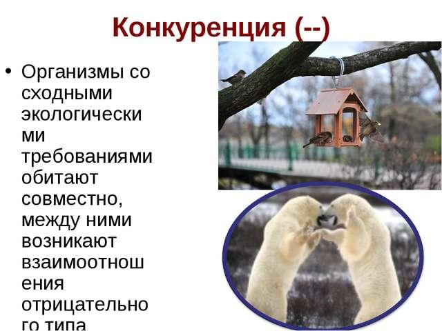 Конкуренция (--) Организмы со сходными экологическими требованиями обитают со...