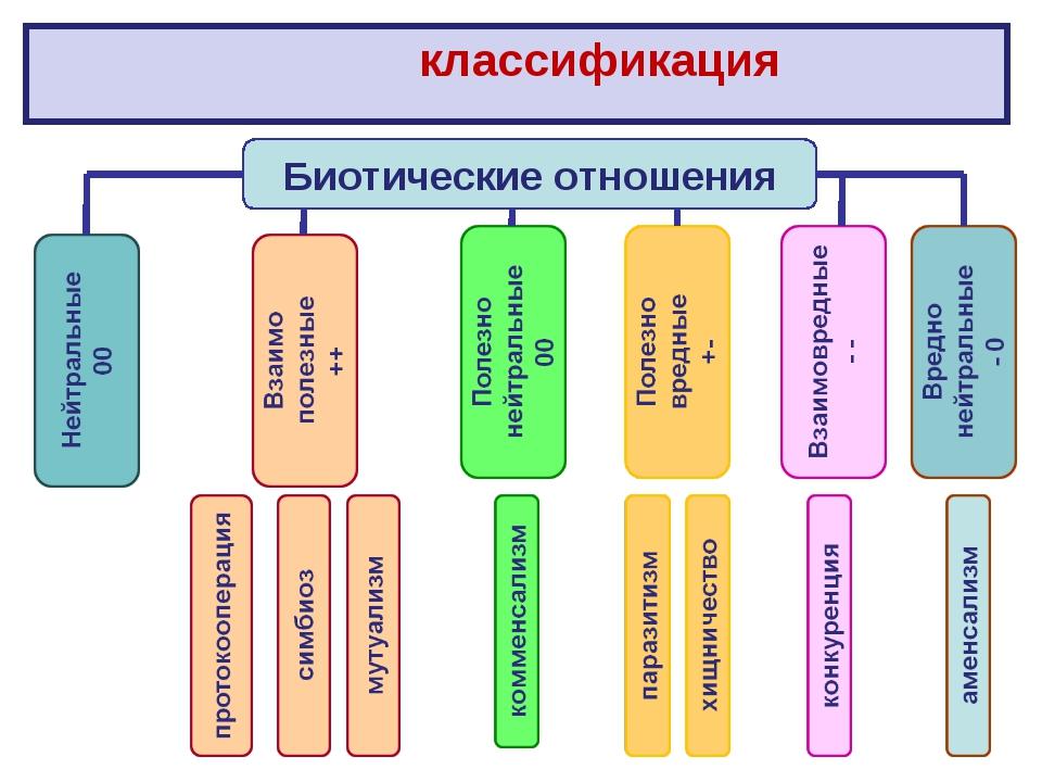 классификация Биотические отношения