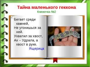 Тайна маленького геккона Книжечка №2 Бегает среди камней, Не угонишься за ней