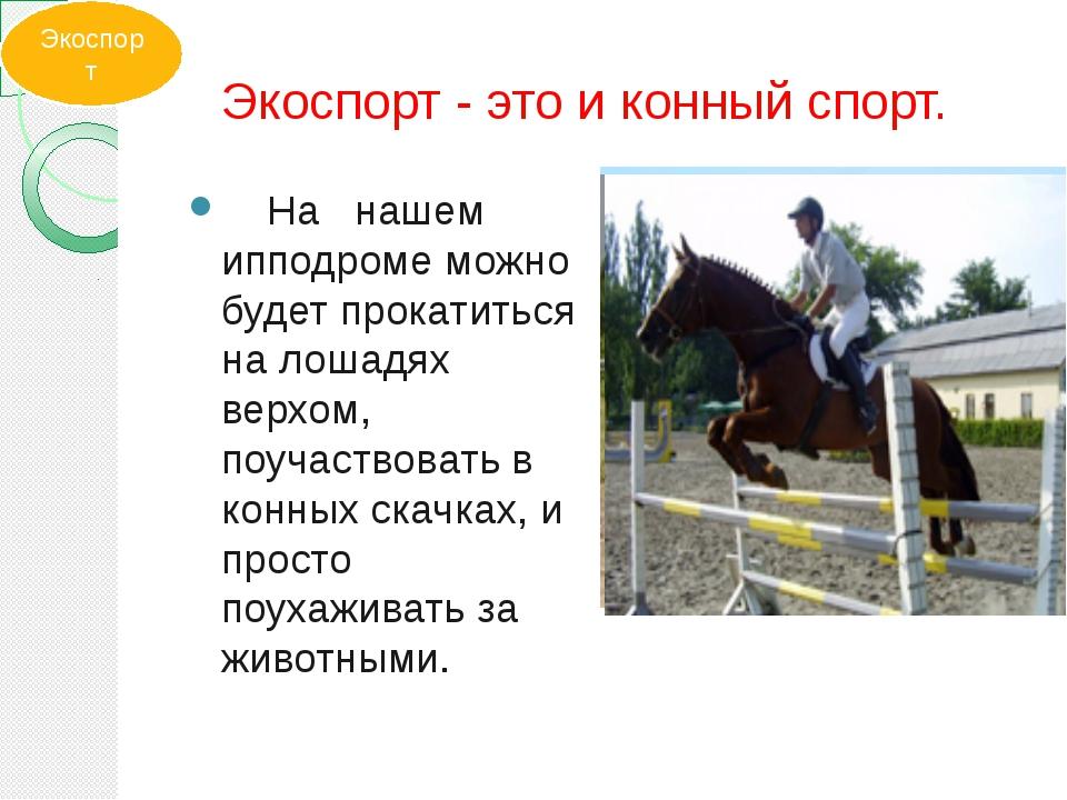 Экоспорт - это и конный спорт. На нашем ипподроме можно будет прокатиться на...
