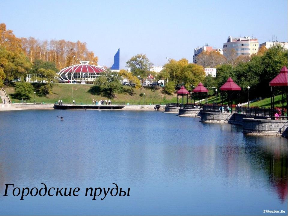 Городские пруды