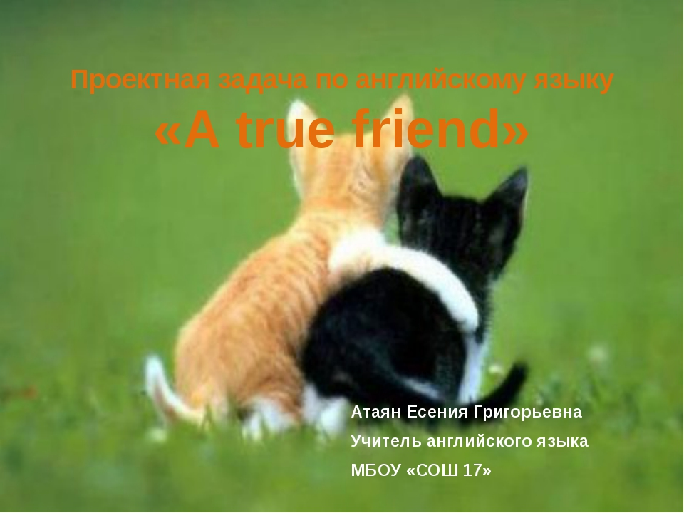 Проектная задача по английскому языку «A true friend» Атаян Есения Григорьевн...