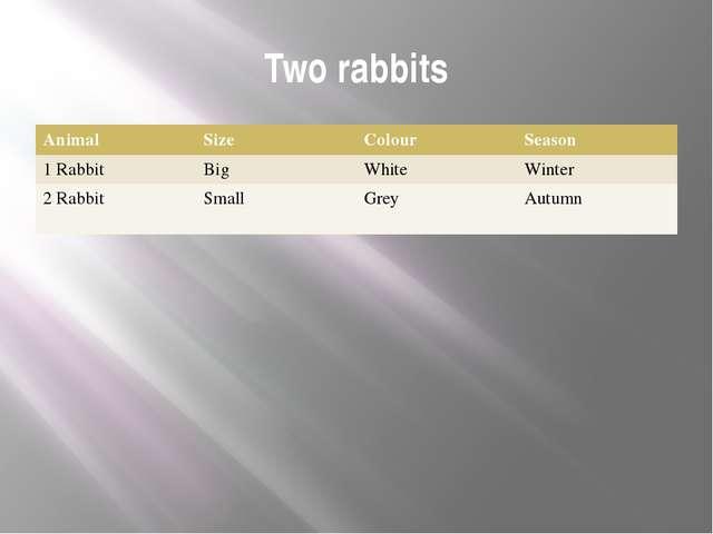 Two rabbits Animal Size Colour Season 1 Rabbit Big White Winter 2 Rabbit Smal...