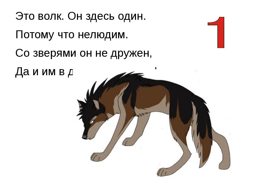 Это волк. Он здесь один. Потому что нелюдим. Со зверями он не дружен, Да и и...