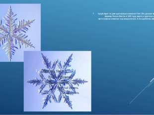 Существуют ли две одинаковые снежинки? Нет! Это доказал в своих работах ферме