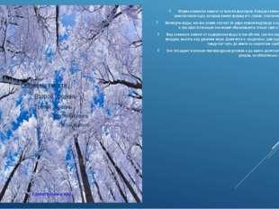 Форма снежинокзависит от многих факторов. Каждая снежинка — это совокупность