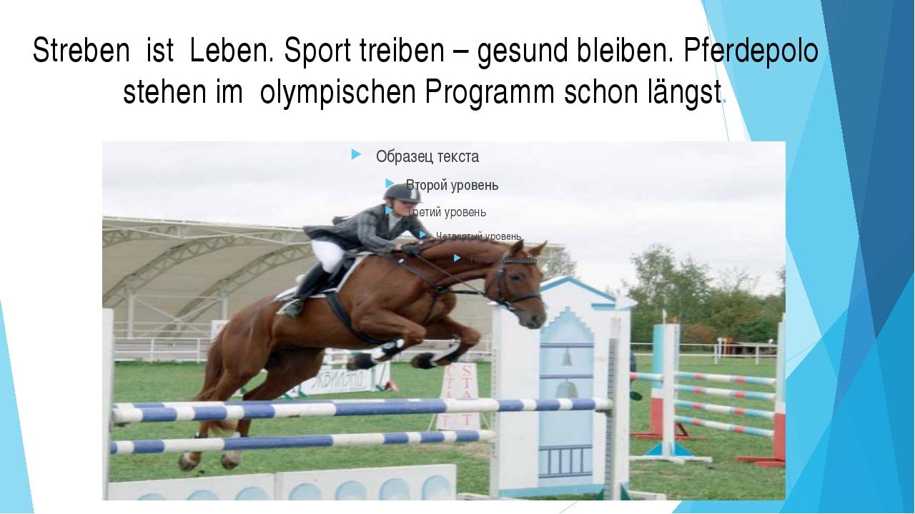Streben ist Leben. Sport treiben – gesund bleiben. Pferdepolo stehen im olymp...