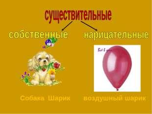 Собака Шарик воздушный шарик