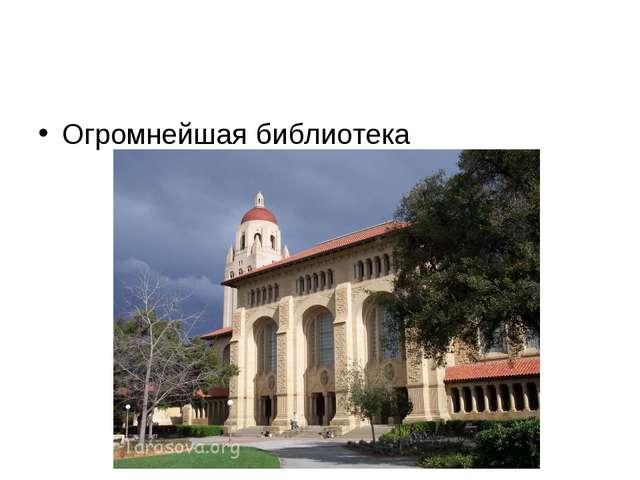 Огромнейшая библиотека