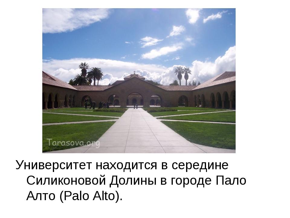 Университет находится в середине Силиконовой Долины в городе Пало Алто (Palo...