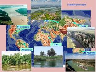 Главные реки мира Амазонка Нил Муррей Лена Миссисипи Обь
