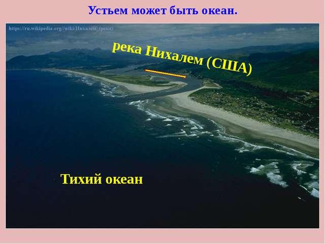 Устьем может быть океан. Тихий океан река Нихалем (США)