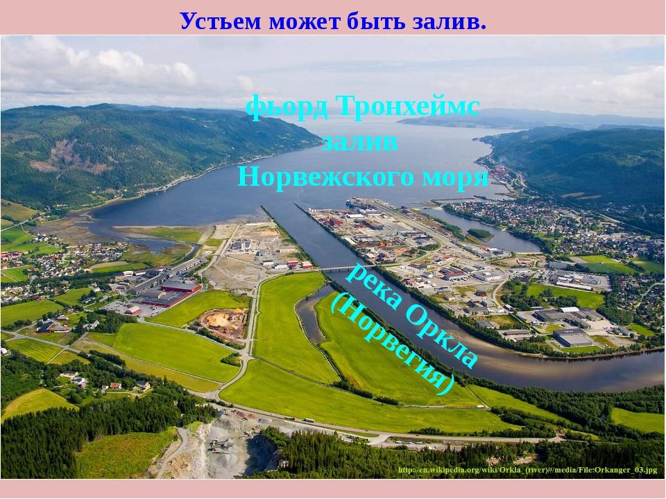 Устьем может быть залив. фьорд Тронхеймс залив Норвежского моря река Оркла (Н...