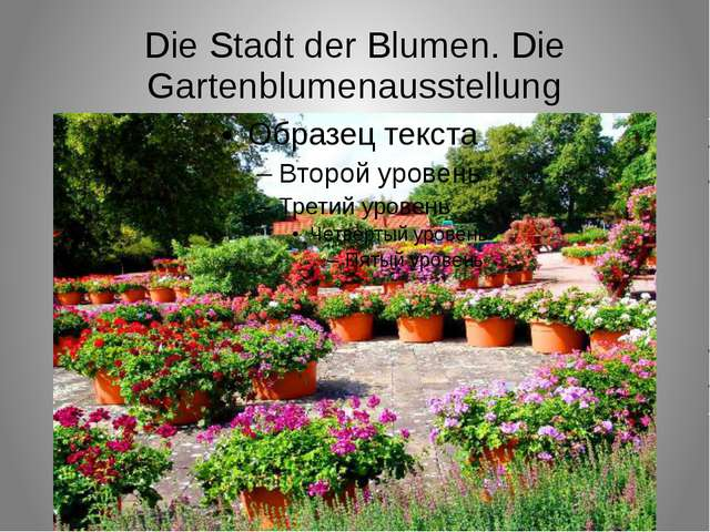 Die Stadt der Blumen. Die Gartenblumenausstellung
